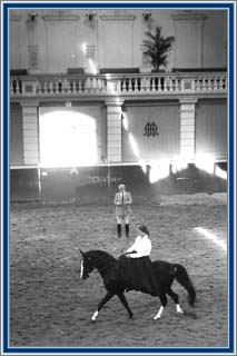 In the very heart of Amsterdam, the riding hall of the famous Hollandse Manege, I received side-saddle riding instruction by Mr. Aafjes, on Lad's Black Buster.