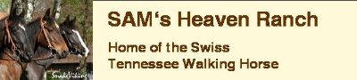 SAM's Heaven Ranch - home of the Swiss Tennessee Walking Horse