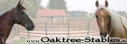 Oaktree Stables in Germany